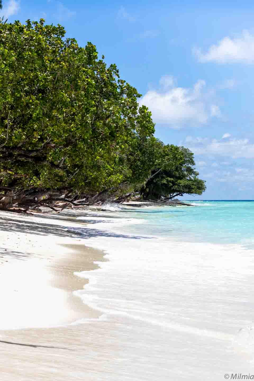 Seychellen mit Baby und Kind